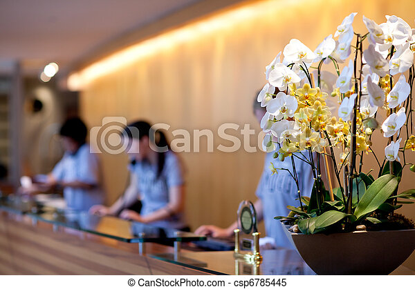 hotel reception - csp6785445