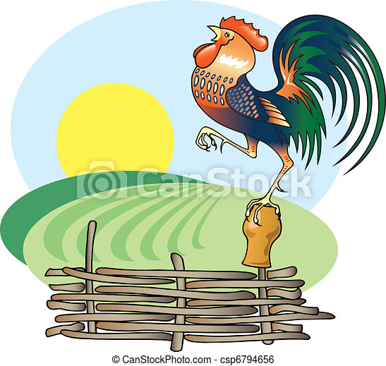 Singing Rooster and morning Sun. - csp6794656