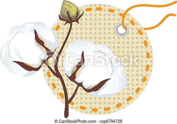 Cotton branch with label (Gossypium - csp6794728
