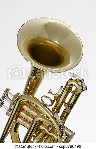 Cornet Trumpet Isolated on White - csp6796490