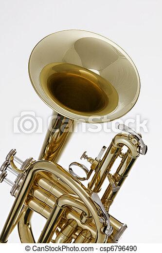 Cornet Trumpet Isolated on White - csp6796490