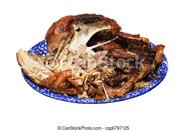 half eaten turkey - csp6797125