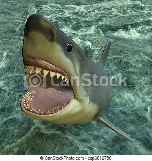 shark attack - csp6812786