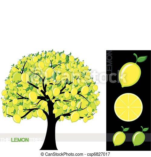 Lemon Tree Artwork Lemon Tree Illustration of a