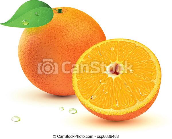 Fresh juicy oranges  - csp6836483