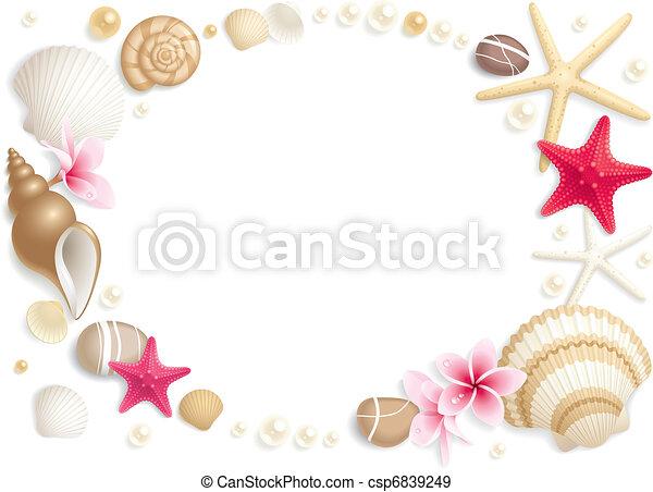 貝殻, フレーム - csp6839249 背景, 貝殻, Starfishes, 作成, フレ