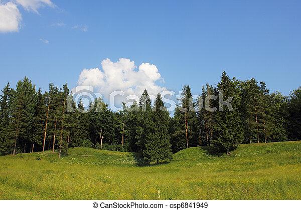 Rural landscape - csp6841949