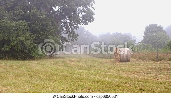 Haystacks_0268 - csp6850531