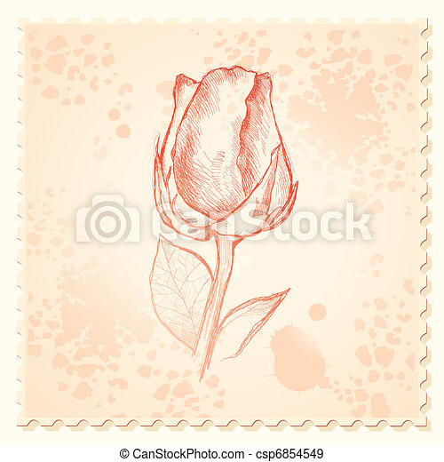 Vintage rose background - csp6854549