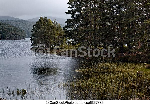 Scenic view of Loch an Eilein - csp6857336