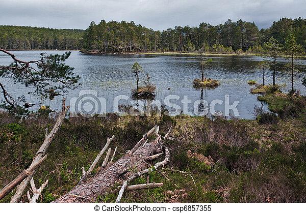 Loch an Eilein - csp6857355