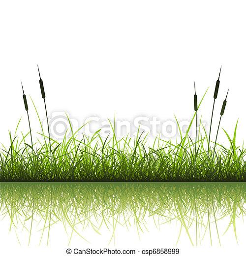 Grass Background - csp6858999