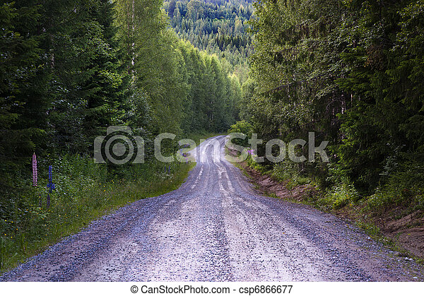 Dirt road in forest - csp6866677