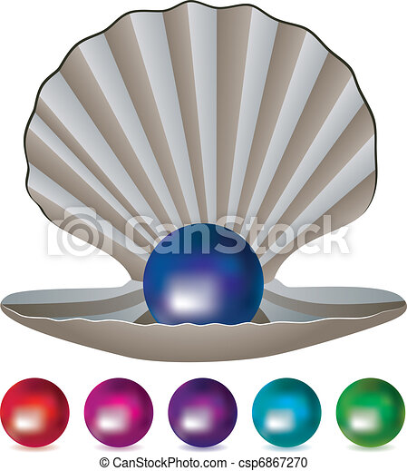 pearls and a shell - csp6867270