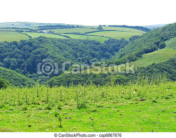 rolling green fields - csp6867676