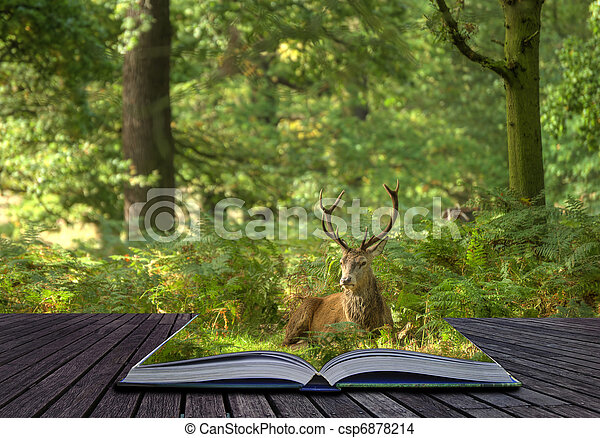 Creative concept idea of Red deer stag in forest coming out of pages in magical book - csp6878214