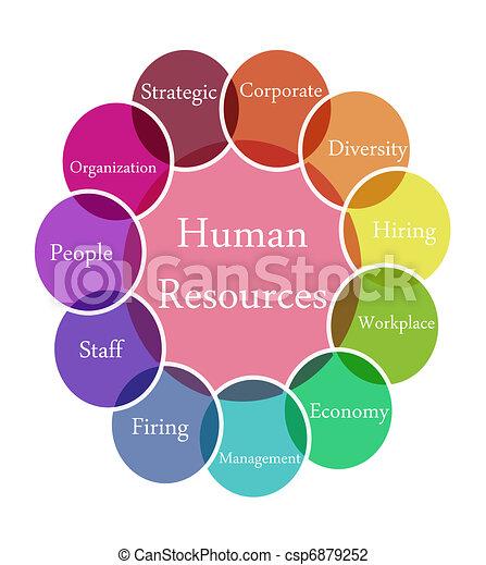 Human Resources illustration - csp6879252