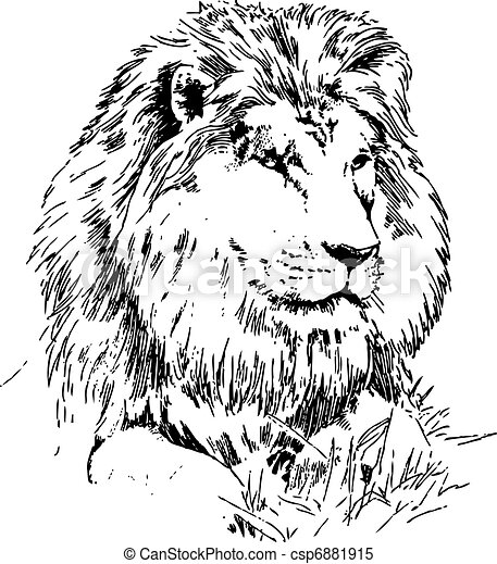 Lion lying on grass - csp6881915