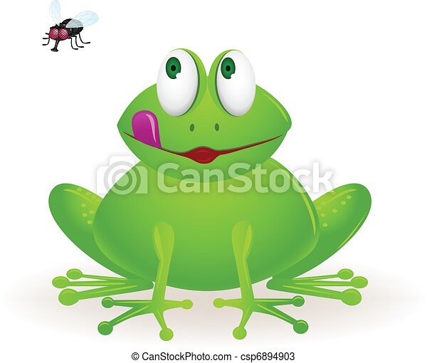 Frog and fly - csp6894903