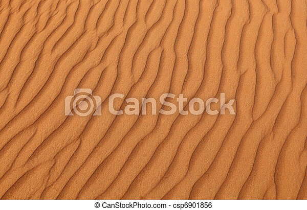 Pattern on a sand dune in a desert near Dubai, United Arab Emirates - csp6901856
