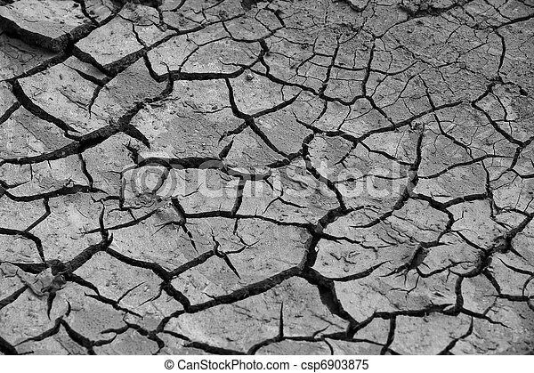 cracked soil - csp6903875