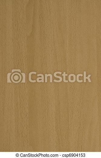 Beech veneer - csp6904153