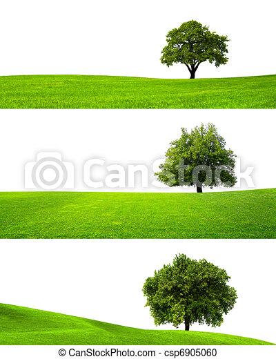 Green nature - csp6905060