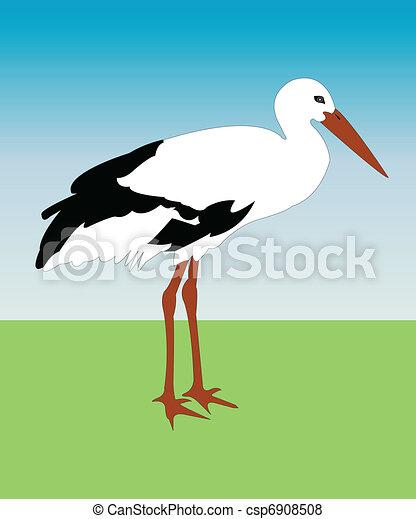 Stork - csp6908508