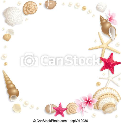 Seashell frame - csp6910036