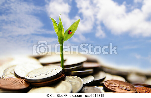 new growth from coins - financial concept - csp6915318