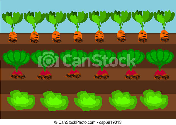 Vectors of Vegetable path Vegetables growing on path under blue
