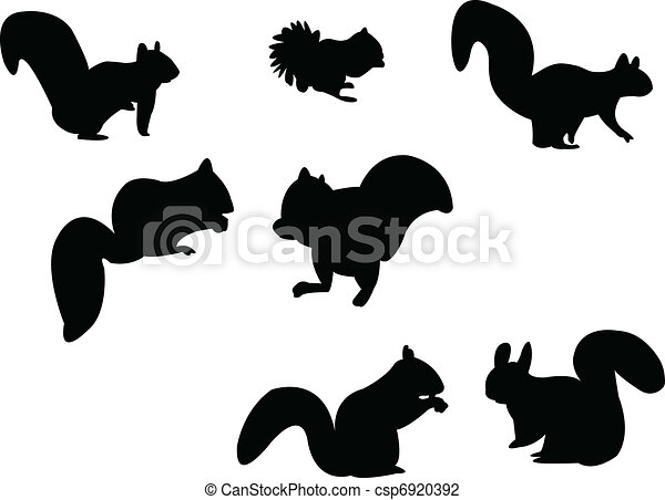 Squirrel silhouette - csp6920392