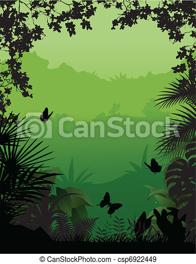 tropical forest background - csp6922449