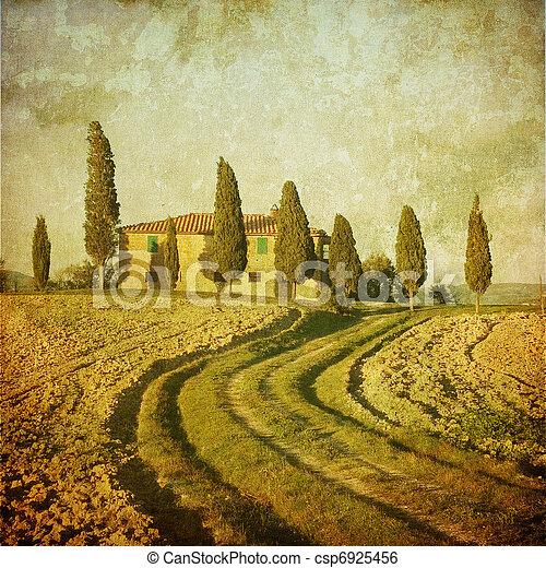 vintage tuscan landscape - csp6925456