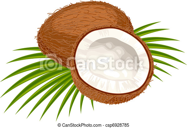 Coconut with leaves on a white background.  - csp6928785