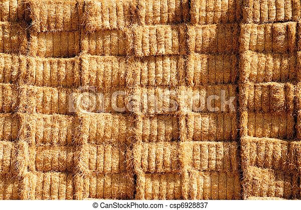 Bales of hay - csp6928837