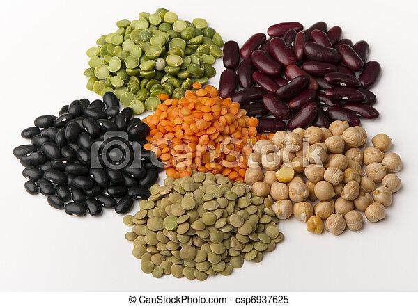 different species of legumes  - csp6937625