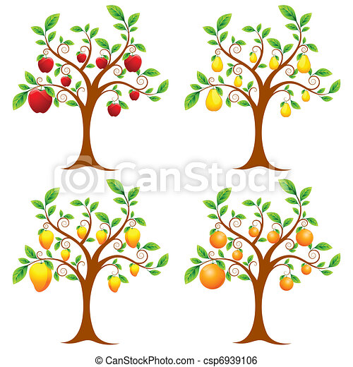 Fruit Tree - csp6939106