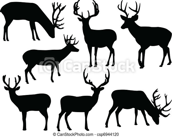 641095 furthermore Deer Head furthermore 2322237284312135 further Whitetail Deer Clipart Black And White further Whitetail Deer Skull Drawings. on whitetail deer clip art