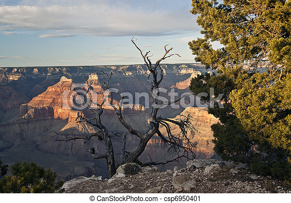 Grand Canyon National Park USA - csp6950401
