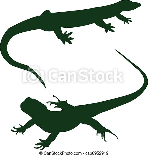 two lizards - vector - csp6952919