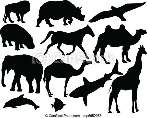 animal collection - vector - csp6952956