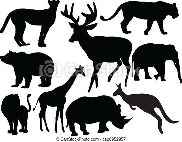 animal collection - vector - csp6952957
