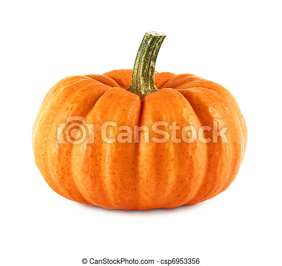 Neat pumpkin on white - csp6953356