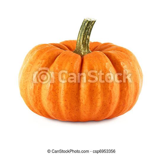 Neat pumpkin on white - csp6953356