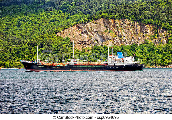 Cargo Ship on Bosporus Strait - csp6954695