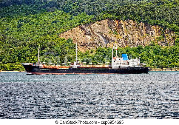 Cargo Ship on Bosporus Strait - csp6954695