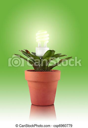 Eco plant - csp6960779