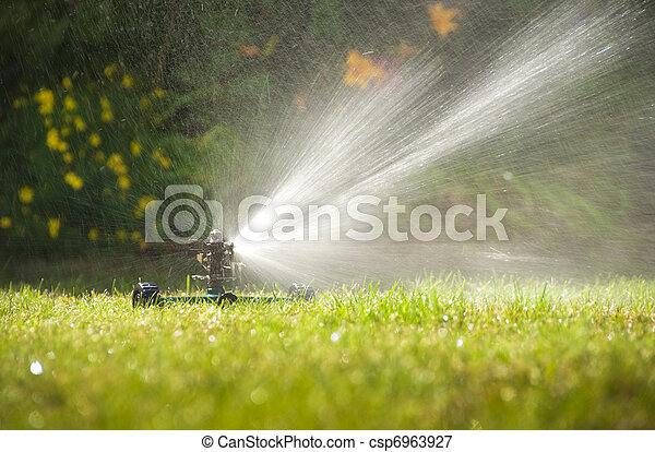 Lawn sprinkler - csp6963927