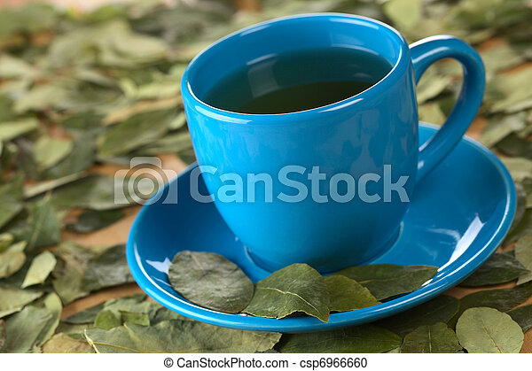 Popular Peruvian herbal tea made of dried coca (lat. Erythroxylum coca) leaves (Selective Focus, Focus on the front rim of the cup and the front of the second from left coca leaf on the saucer) - csp6966660